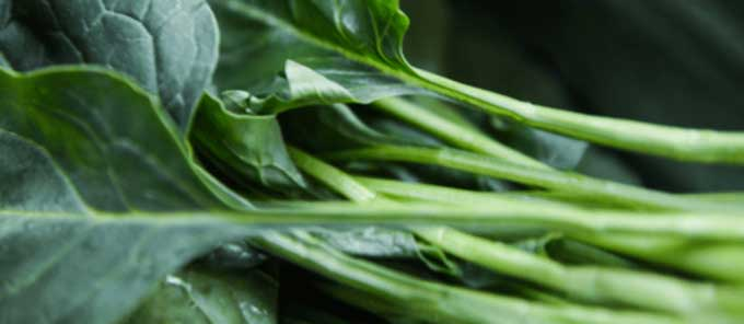 Micronutrient Foods - Spinach