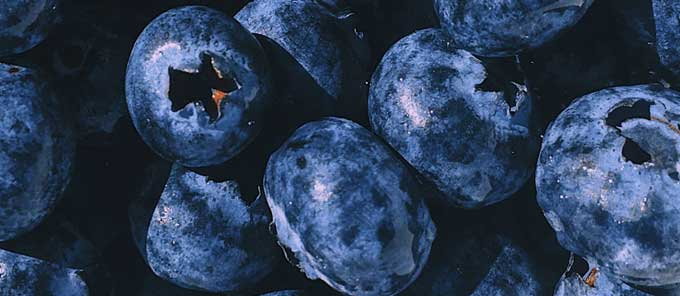 Micronutrients - Blueberries
