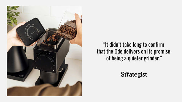 Strategist Ode Brew Grinder Review Quote
