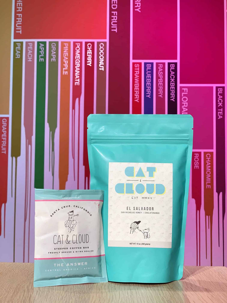 Cat & Cloud Coffee and Steeped Coffee for Fellow Featured Roasters