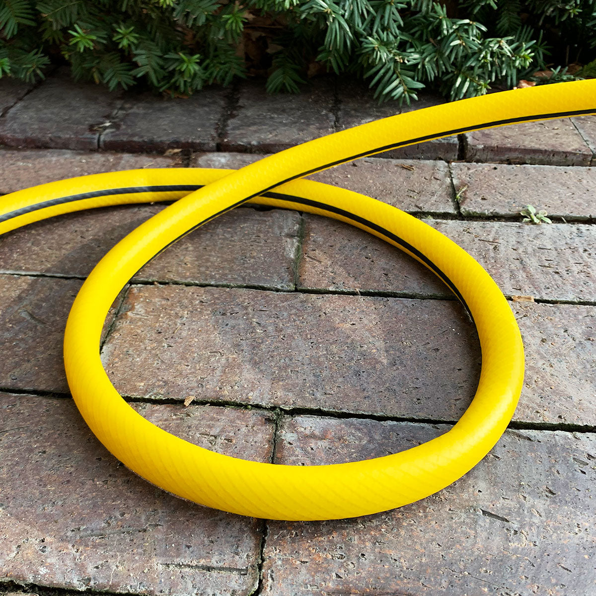 Ray Padula hybrid hose superflex