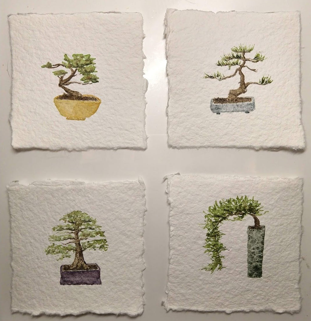 Bonsai Quartet