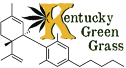 Kentucky Green Grass