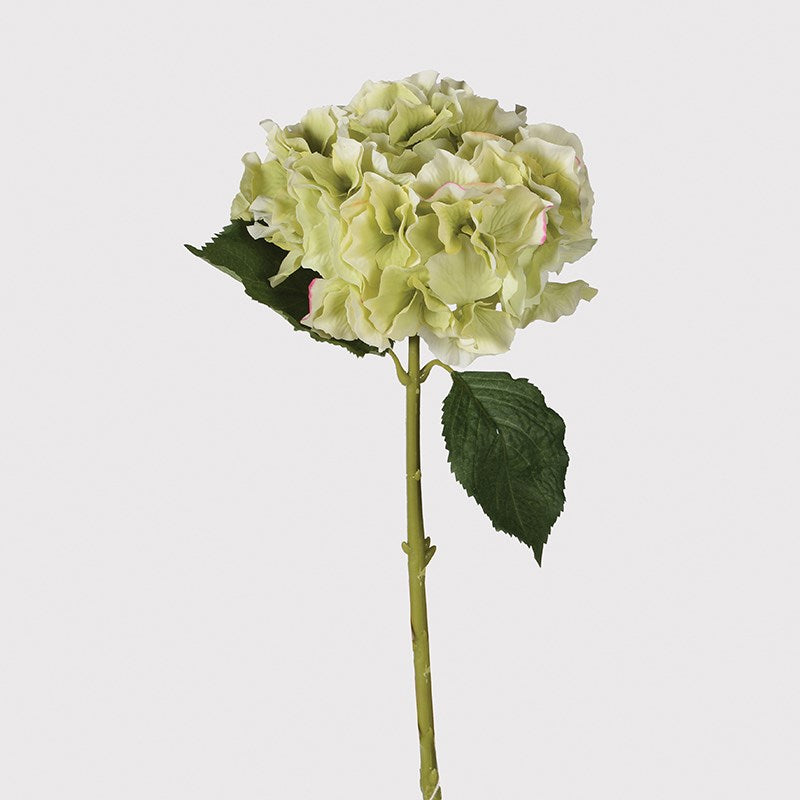 PALE LIME HYDRANGEA SPRAY