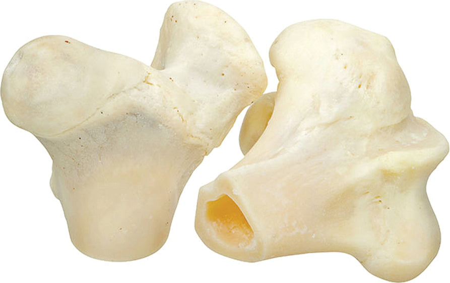 Redbarn Pet Products Inc - White Knuckle Bone (Case of 20 )