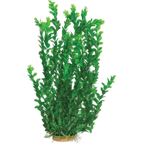 Aquatop Aquatic Supplies - Extra Tall Aquarium Plant - LIGHT GREEN / 25 INCH - Pet