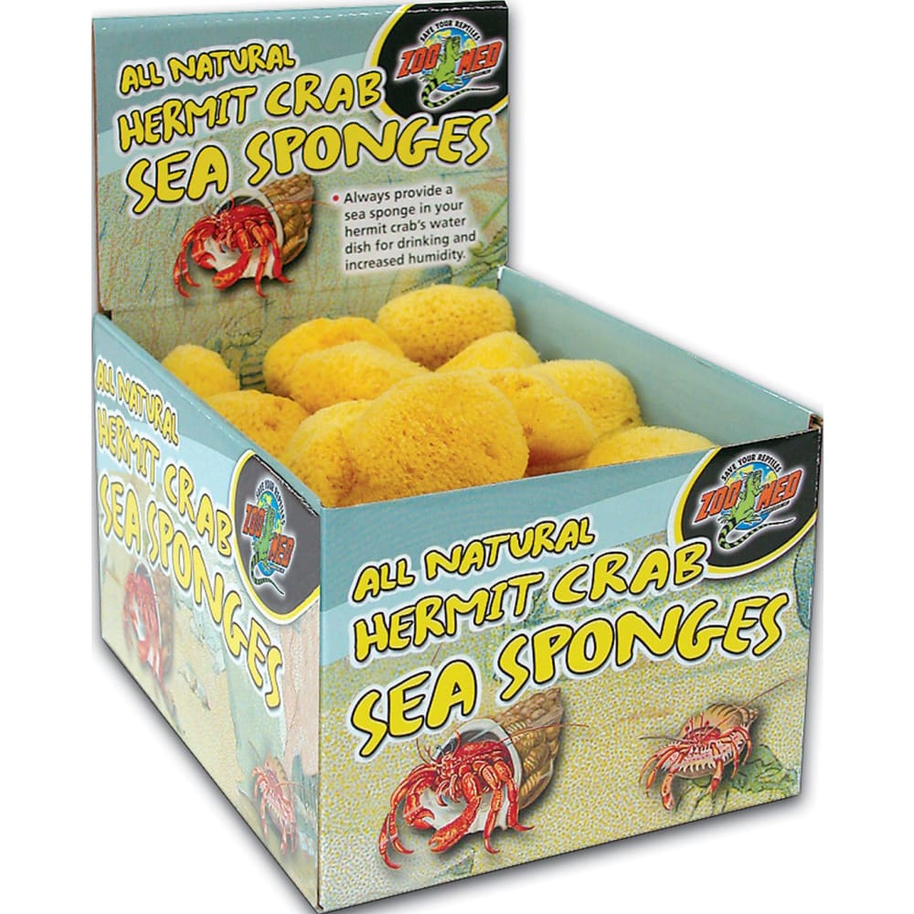 Zoo Med Laboratories Inc - All Natural Hermit Crab Sea Sponges Display - 36 PIECE - Pet