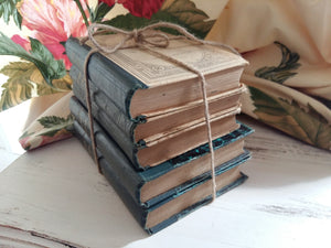 Antique French Blue Book Bundle. Book Stack of 1900's Antiquarian Books by Racine, Montesquieu, La Fontaine & Bruyère. French Classics.