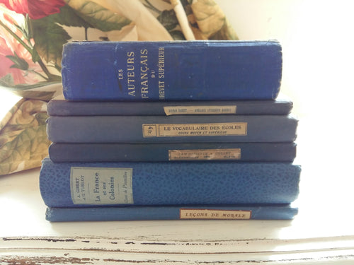 Antique French Blue Book Bundle of Early 1900s Antiquarian School Books. Royal Blue Book Stack. Decorative Books. Rare French Book Set.