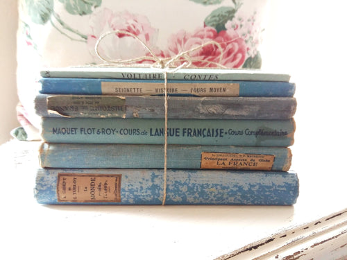Antique French 'Turquoise Blue' Book Bundle. Boho Book Stack of French School Books. Timeworn Books for Decoration and Bookshelf Styling.