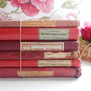Antique French Red Book Bundle of Old French School Books.