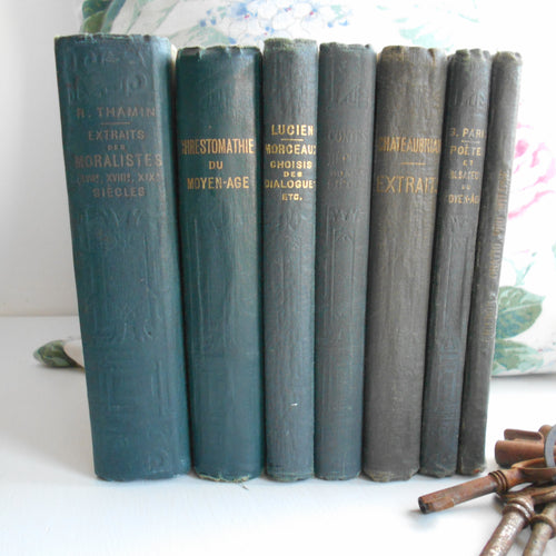 Antiquarian Book Set. French 'Midnight/Inky Blue' Book Bundle. Late 1800s/Early 1900s Stack of French Classic Literature. Decorative Books.