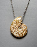 Ammonite Fossil (with Suture Markings) Necklace