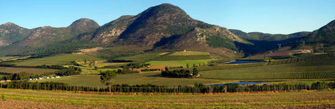 Pano Hop Farms, South Africa