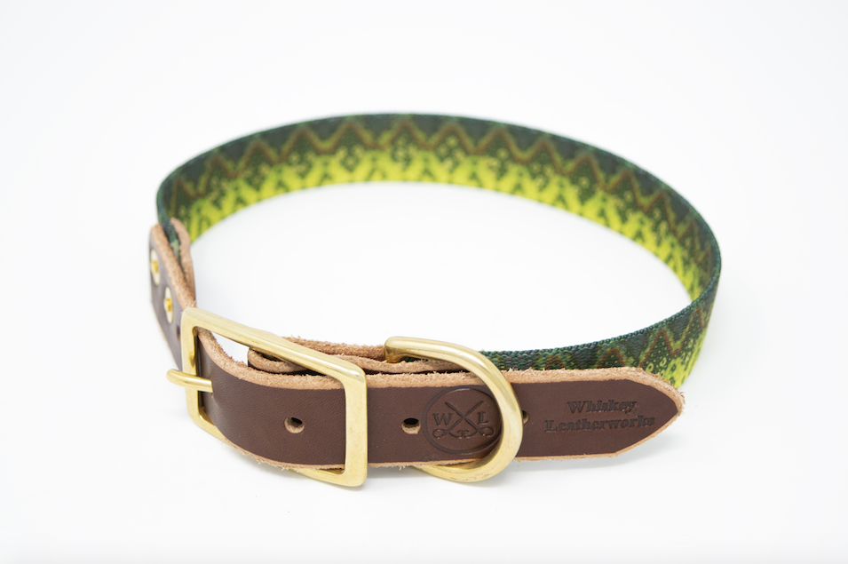 Fish Print Dog Collar