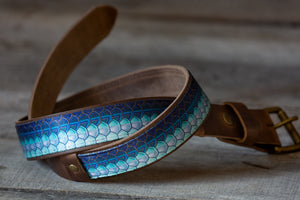 The Tarpon Belt