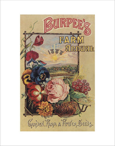 Front Cover Burpee's catalogue