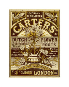 Carters' Nursery catalogue.