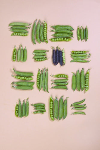 A Plate of Shelling Peas