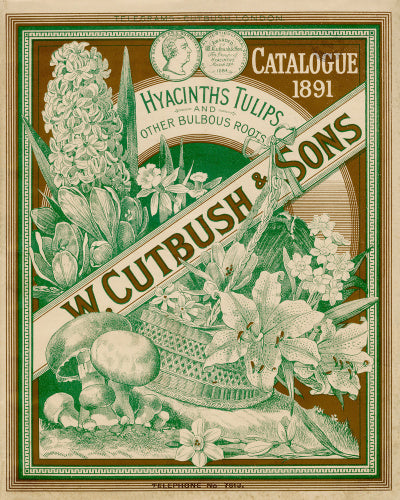 W Cutbush & Sons catalogue 1891