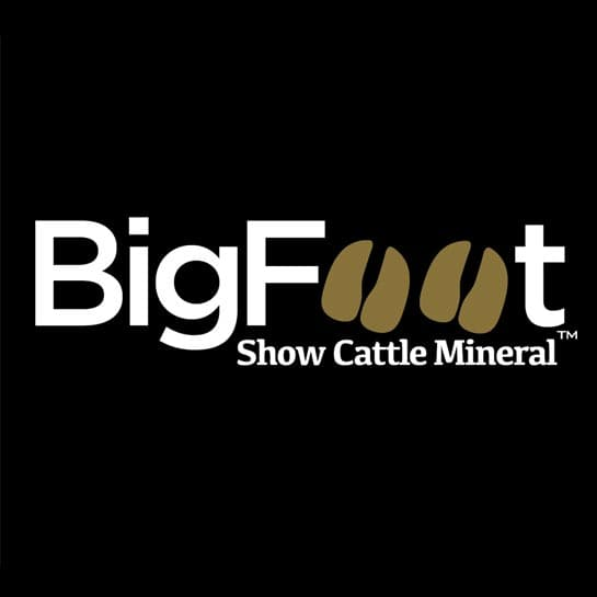 BigFoot Show Cattle Mineral