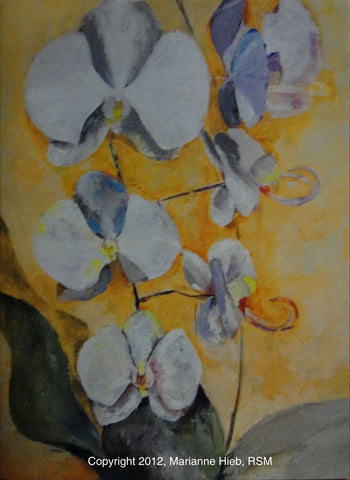 White Orchid in Orange Air