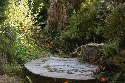 Slate Steps in a Cornish Cottage Garden