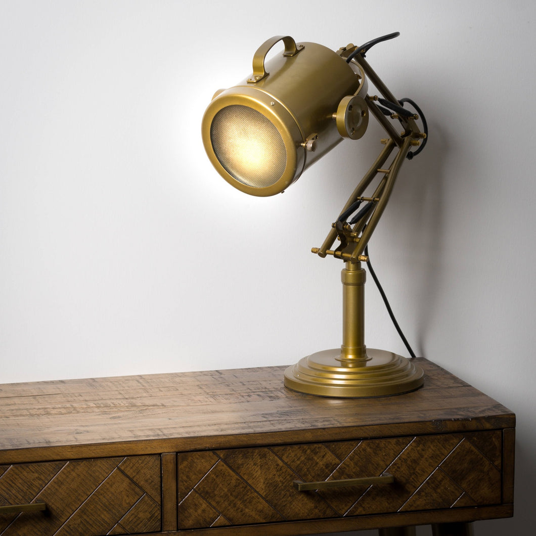 Industrial Adjustable Spot Light Lamp