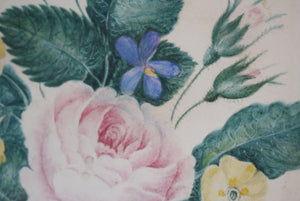 Wild Roses, Violets and Primroses Paintings