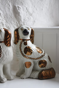 Staffordshire Copper Lustre Spaniels
