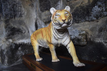 Load image into Gallery viewer, ceramic tiger stood upon wooden plinth