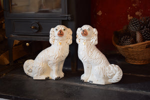 Antique Victorian Staffordshire Dogs