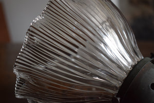 Small Holophane Pendant Lamp Shade