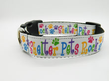 Shelter Pets Rock Collar