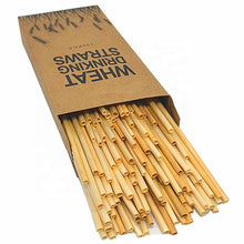Load image into Gallery viewer, Hay Straws - 100 Pack