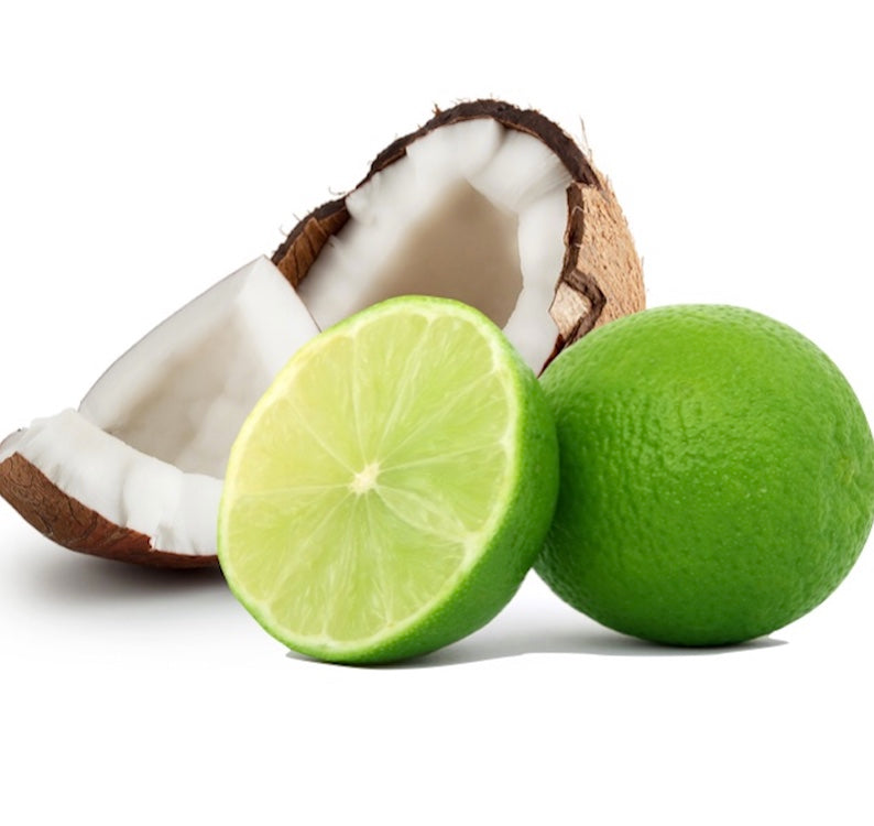 Coconut Lime Shower Gel | Salgal Co