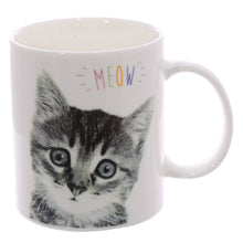 Load image into Gallery viewer, Multi-Buy Offer - 2 Bone China Mugs - Cute Kitten and Pug