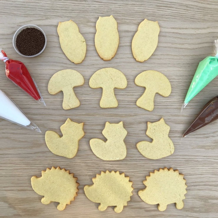 Woodland Cookie Decorating Kit