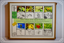 Load image into Gallery viewer, Card Set: Native Plants of the Inland Northwest (Horizontal Edition)