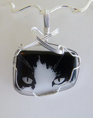 Black and White Dichroic Cat