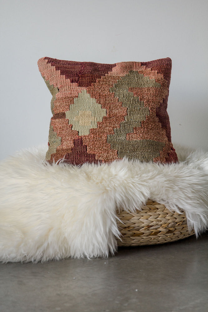 Handwoven Kilim Throw Pillow - Ranch - 16x16