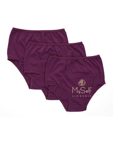 Gemsli 3305 Plum Cotton Briefs 3 Pk. myselflingerie.com