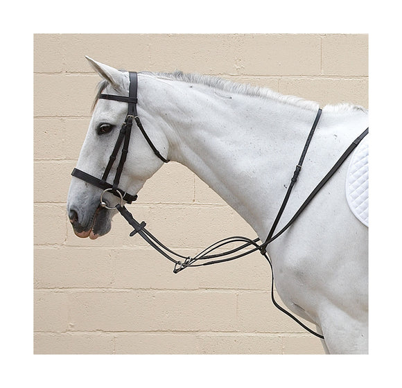Bridle Accessories