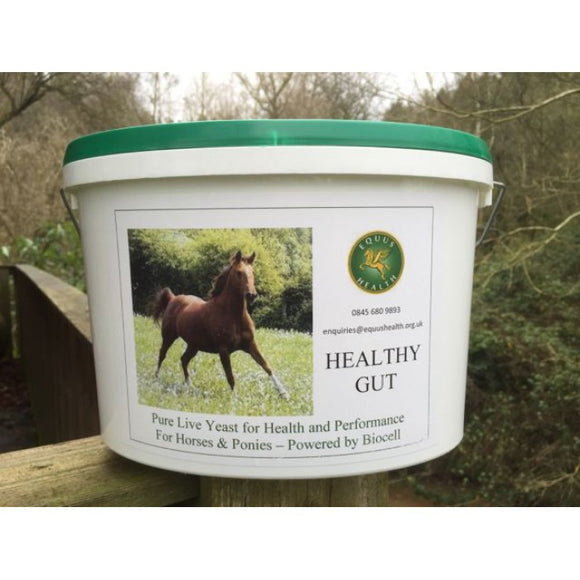 Equus Health Healthy Gut 2.5kg