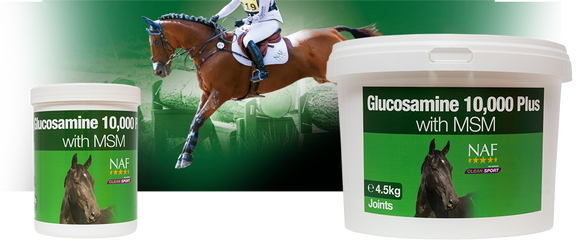 NAF Glucosamine 10000 Plus with MSM