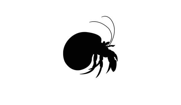 Hermit Crab in Turbo Shell Vinyl Decal Sticker