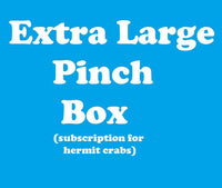 EXTRA LARGE Pinch Box - Monthly Hermit Crab Food Box
