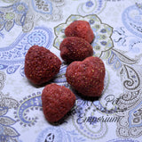 Freeze Dried Strawberries - Hermit Crab Food