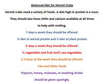Club Hermit Fish N' Shrimp - Hermit Crab Food
