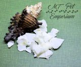 ORGANIC Coconut Flakes - Hermit Crab Food